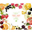 fruit mix banner vector image