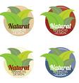 Natural Banners Design Set Vintage Style vector image