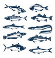 sea fish icon set for seafood and fishing design vector image vector image