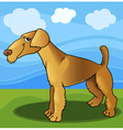 airedale terrier dog cartoon vector image vector image