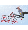 Bird on cherry branch vector image