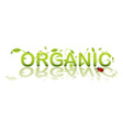 organic shop vector image