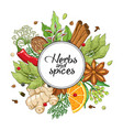 winter round design with spices and herbs vector image