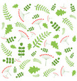 pattern with autumn leaves of different trees vector image