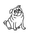 cute outline pug isolated vector image