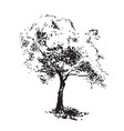 hand-drawn aple tree black and white realistic vector image