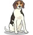 beagle dog cartoon vector image vector image