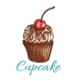 Chocolate cupcake with cream and cherry sketch vector image