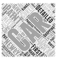 Car Detailing Tips Kinks and Hints Word Cloud