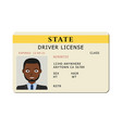 car driver licence card vector image