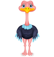 Ostrich cartoon vector image