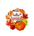 Autumn harvest vegetable fruit and leaf poster vector image