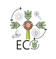 plant with branches and leaves to ecology vector image