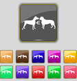 Betting on dog fighting icon sign Set with eleven vector image