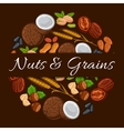 Nuts and grains in round shape emblem vector image