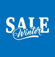 inscription winter sale vector image