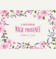 lavender provence card vector image vector image
