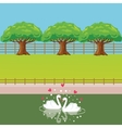 swan couple in lake love heart shaped tree behind vector image