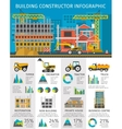 Building Constructor Infographics vector image