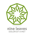 leaves circle ecology flora design vector image