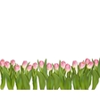 Blossoming tulips decorative border EPS 10 vector image