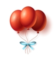 Realistic Cartoon Bunch of Balloons vector image vector image