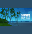 bahamans sea shore beach after sunset beautiful vector image