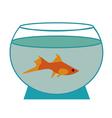 small fish in an aquarium vector image vector image