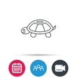 Turtle icon Tortoise sign vector image