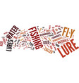 fly lures text background word cloud concept vector image