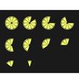 Citrus slices Orange lemon lime and grapefruit vector image