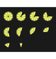 Citrus slices Orange lemon lime and grapefruit vector image