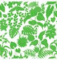 tropic green pattern vector image vector image