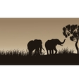 African elephant walking of silhouette vector image