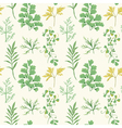 Floral Background - Leaves and Herbs vector image