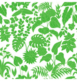 tropic green pattern vector image