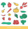 Collection of fruit and vegetables vector image