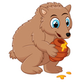 Cute cartoon bear holding honey pot vector image
