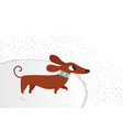 cute dachshund funny portrait of a dog vector image