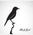 black bird on white background animal easy vector image
