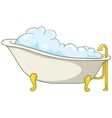 Cartoon home washroom tub vector image
