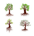 trees with green leaves and roots tree vector image