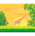 Giraffe in jungle landscape vector image