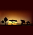 sunrise over the savannah with African elephants vector image