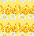 summer chamomile field seamless pattern vector image