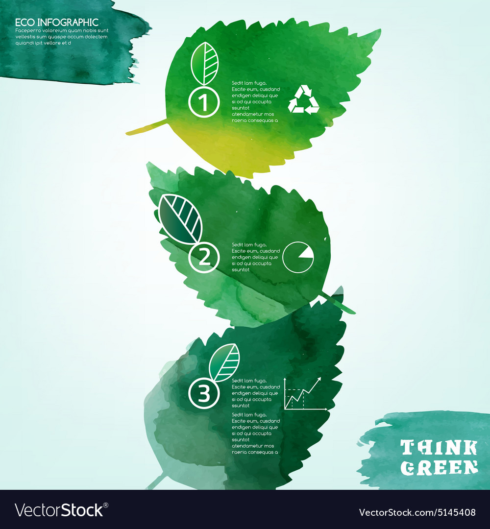 Watercolour leaves infographic vector