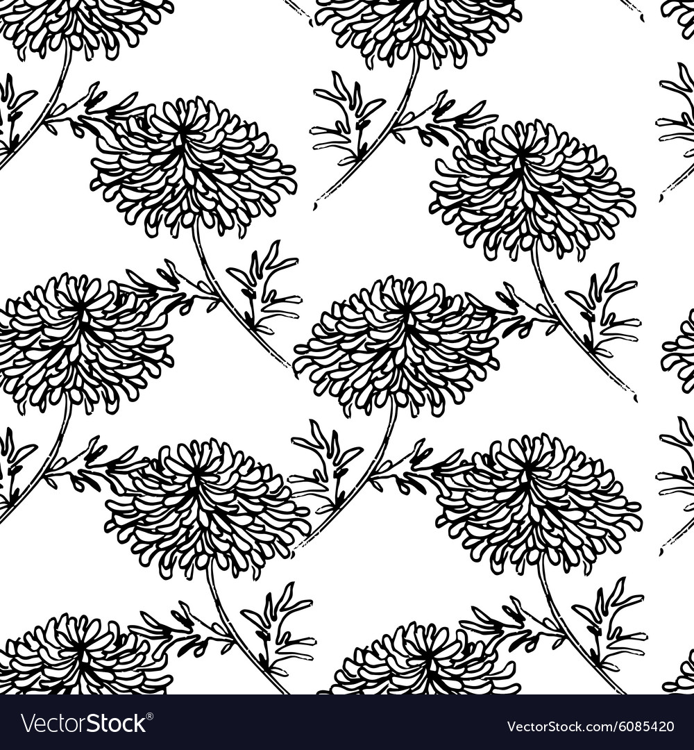 Seamless pattern with drowing chrysanthemum flower vector