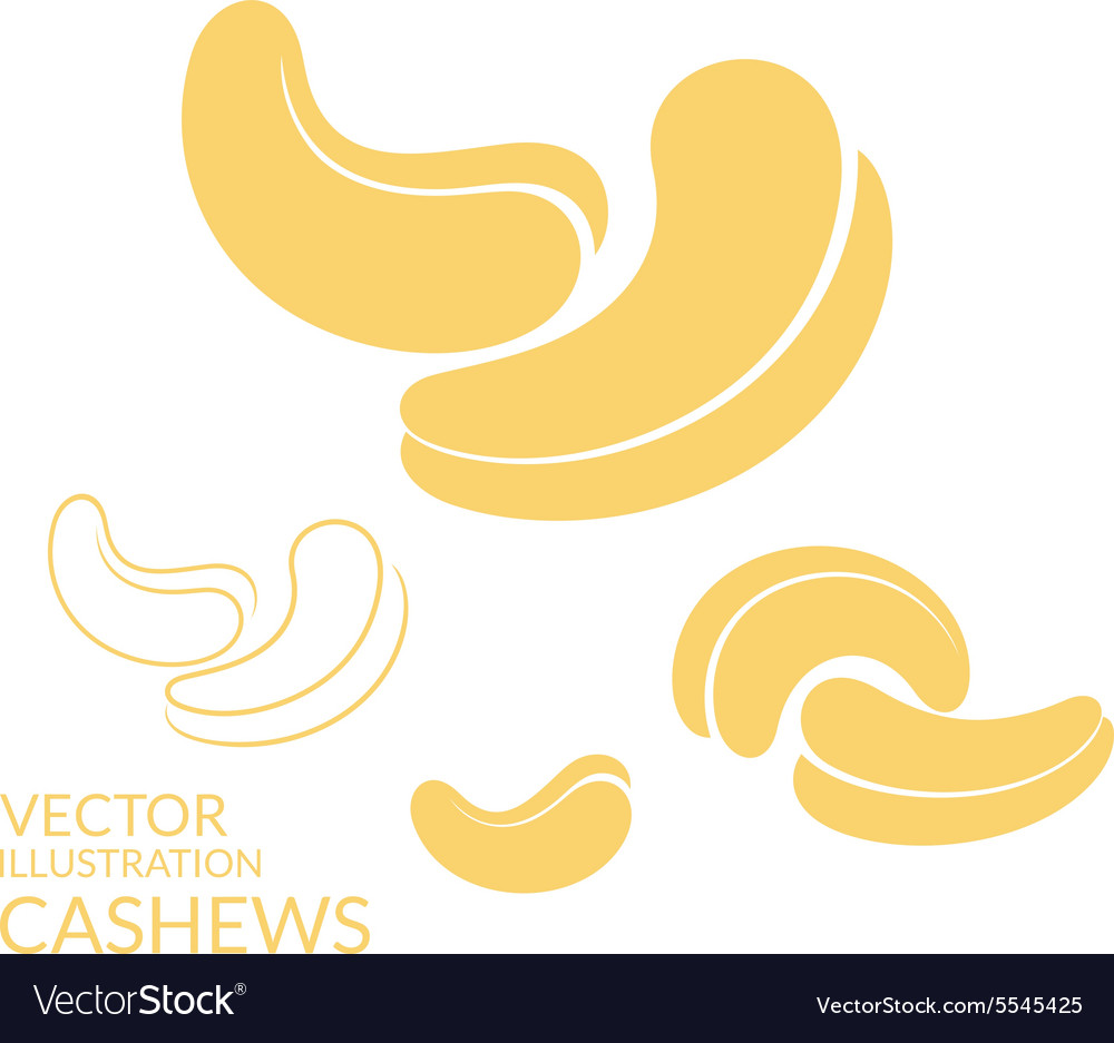 Cashews icon set vector
