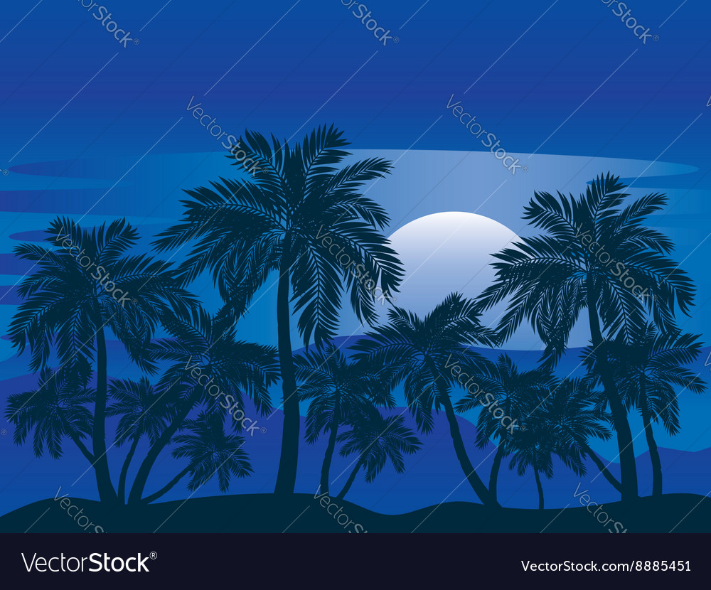 Palm tree at night3 vector