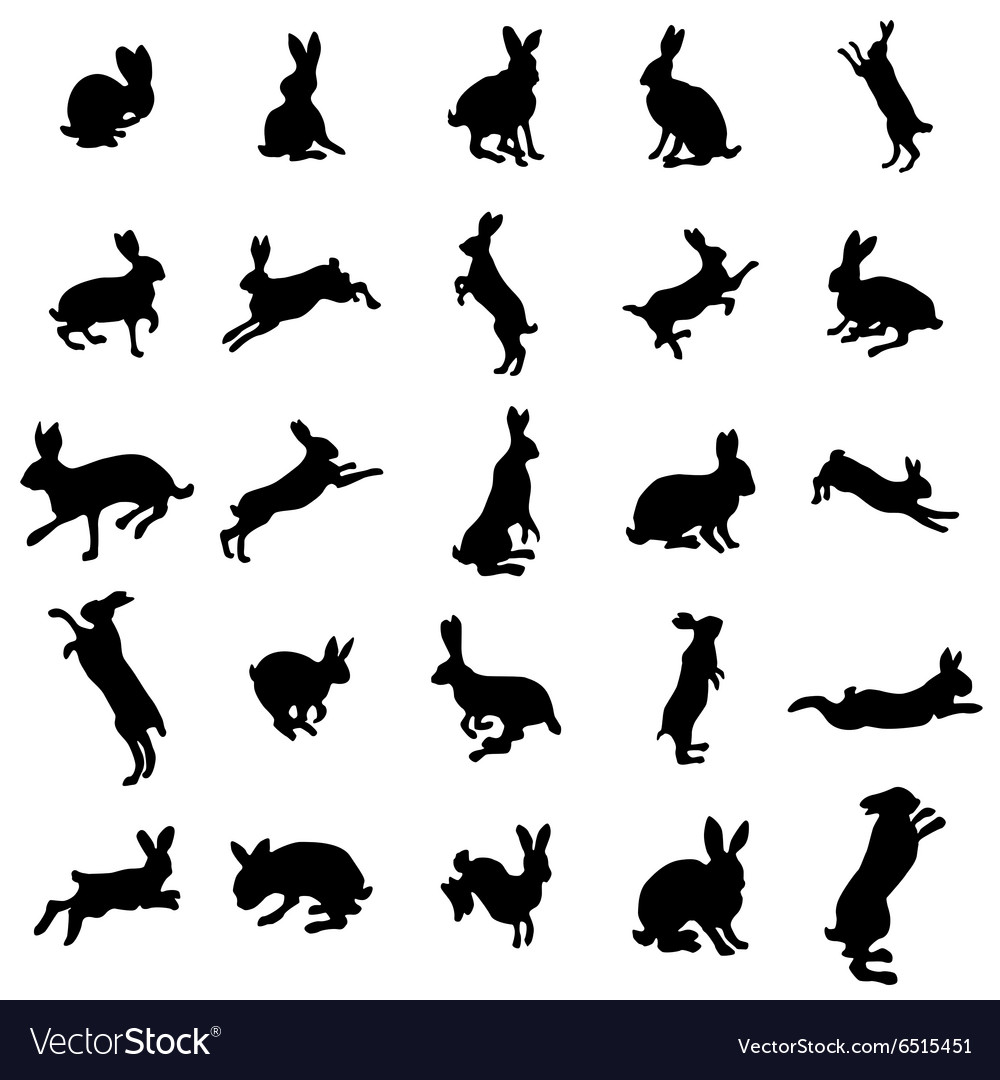 Rabbit silhouettes set vector